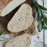 Bio brood en voeding